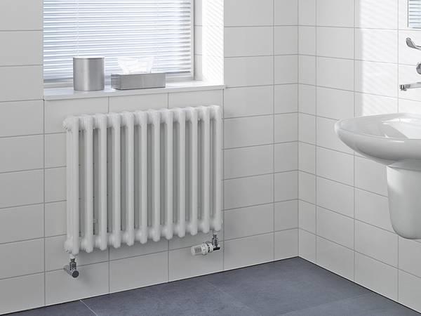 termosifoni in acciaio riscaldamento casa