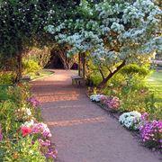 vialetto giardino economico