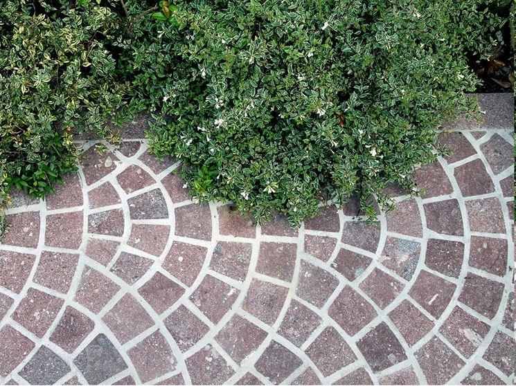 Pavimenti in porfido pavimento per esterni caratteristiche dei