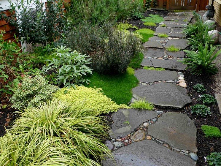 sentiero per giardino