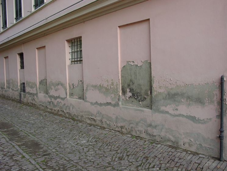 parete con umidità