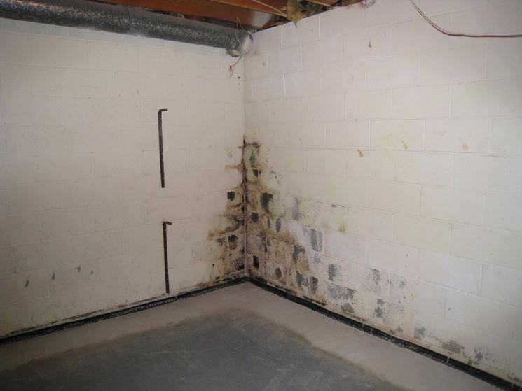 Umidità in un seminterrato