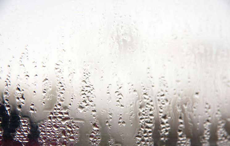 umidità