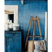 pittura denim