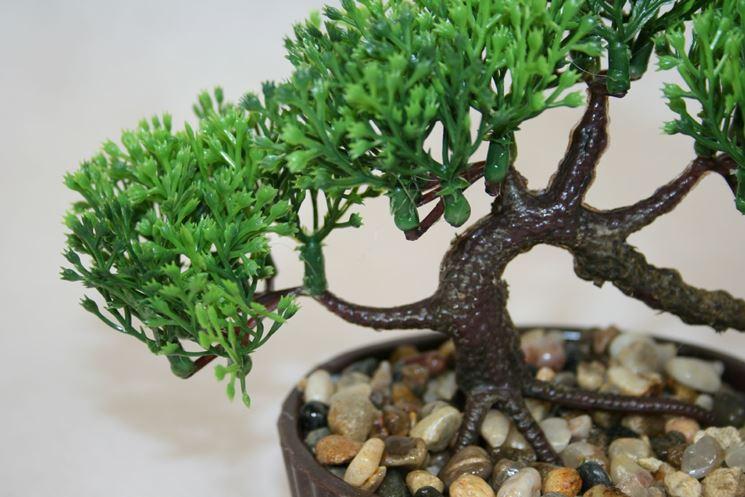 Bonsai finto - Bonsai - Caratteristiche bonsai finto