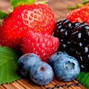 coltivazione frutti di bosco