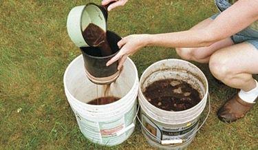 Come concimare l'orto
