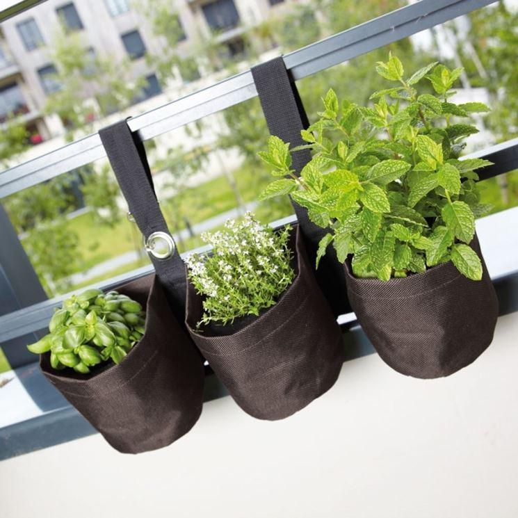 piante aromatiche in casa orto coltivare piante aromatiche in casa. Black Bedroom Furniture Sets. Home Design Ideas