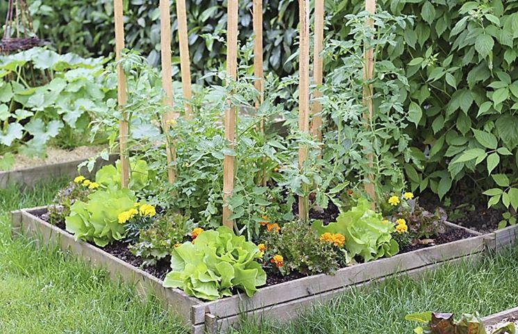 Creare un piccolo orto