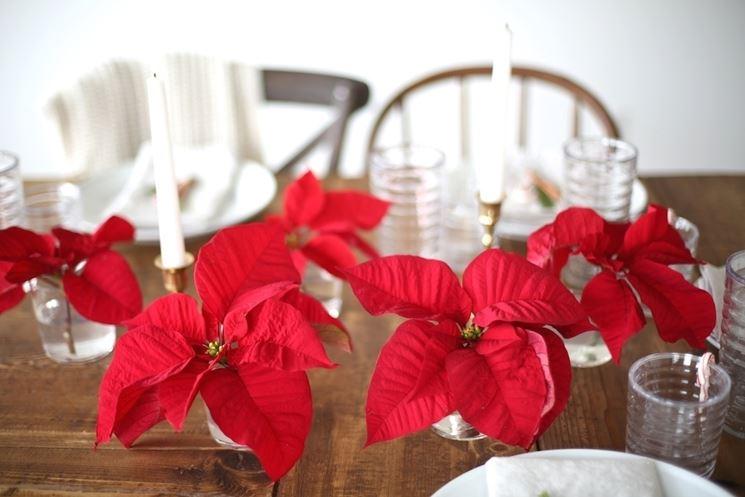 stella di natale sul tavolo natalizio