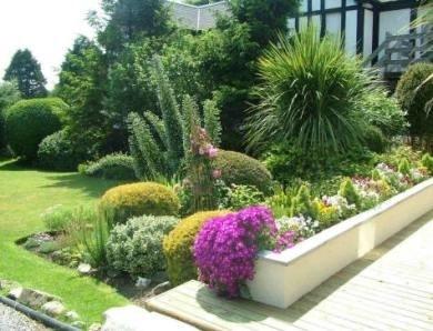 Piante da giardino piante da giardino le principali for Piccoli giardini ornamentali