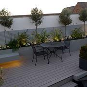 Piante da vaso per esterno piante da giardino for Fiori ornamentali da esterno
