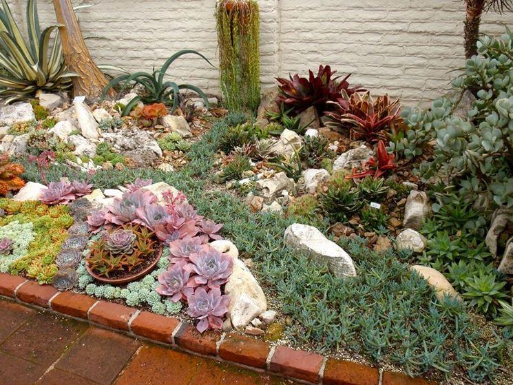 abbastanza Giardini piante grasse - Piante Grasse - Piante grasse da giardino IS15