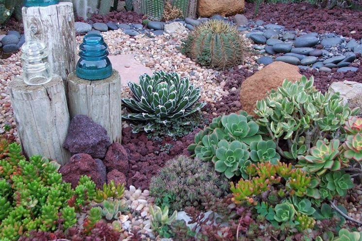 piante grasse da giardino