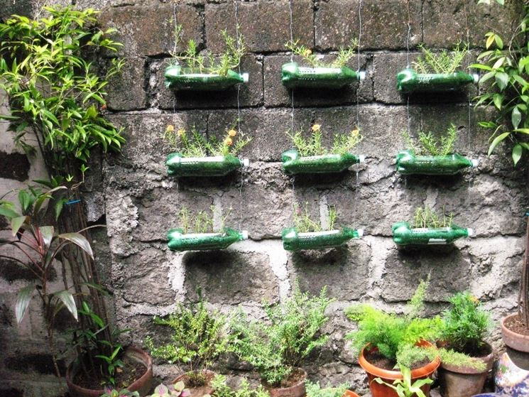 bottiglie di plastica per piante