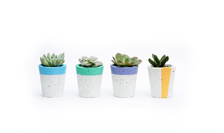 Vasi di cemento di design