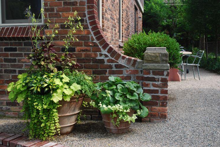 Vasi di terracotta vasi scegliere vasi di terracotta - Vasi terracotta da giardino ...