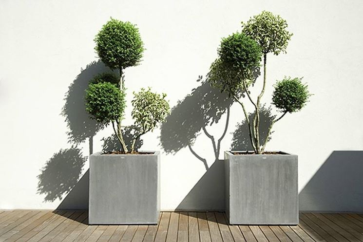 Vasi esterno design vasi for Piante per terrazzi