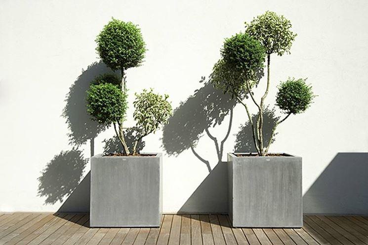 Vasi esterno design vasi for Piante da esterno in vaso