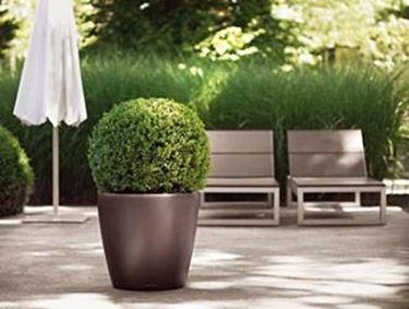 vasi per piante da esterno vasi come scegliere i vasi