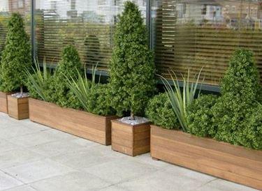 Come sono fatti i vasi per piante da esterno