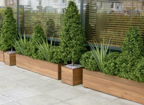 Vasi per piante da esterno - Vasi - Come scegliere i vasi da esterno per le piante?