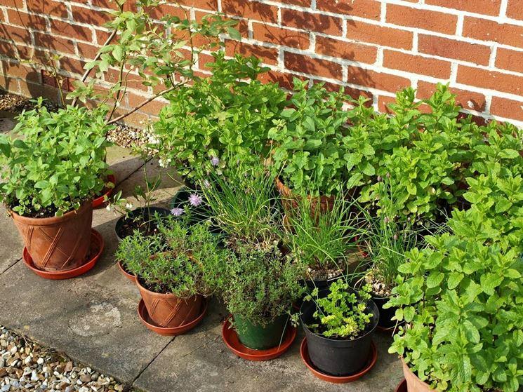 Vasi per piante