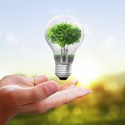 del risparmio energetico beneficia anche la natura